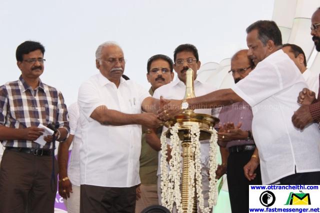 Maathruvandanam 2015 Event Stills  (12)