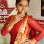 Thiruttu Rail Audio Launch (2)